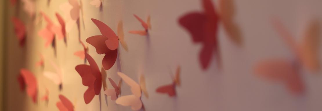 header_papillons